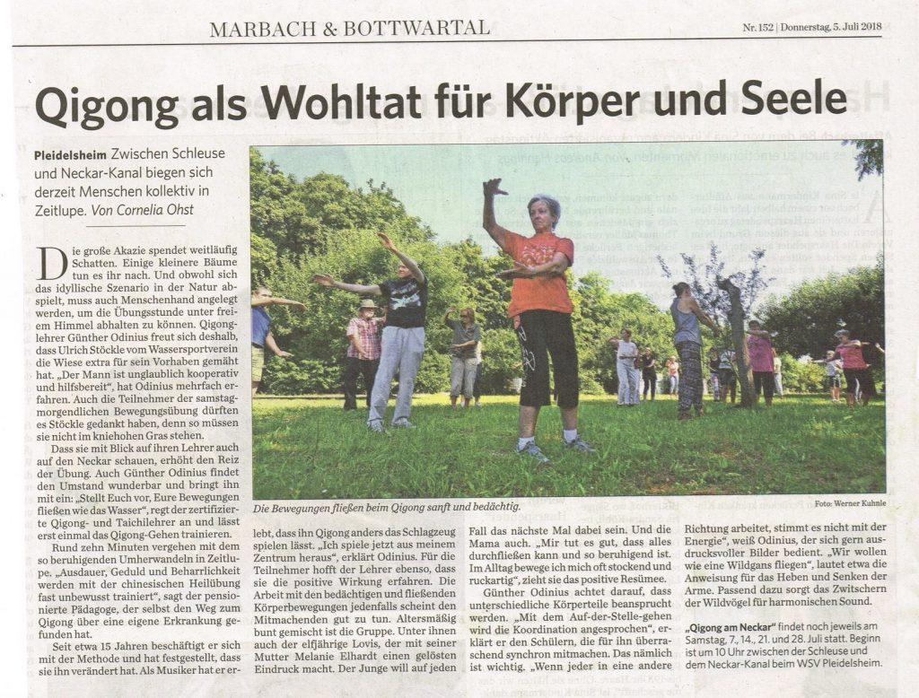 Qigong am Neckar 2018_Presse Kopie